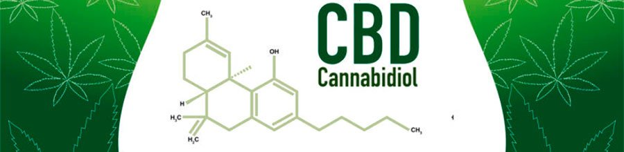Groovy Hemp Blog provides information on Organic, Non-GMO CBD Oil products along with other interesting subjects.