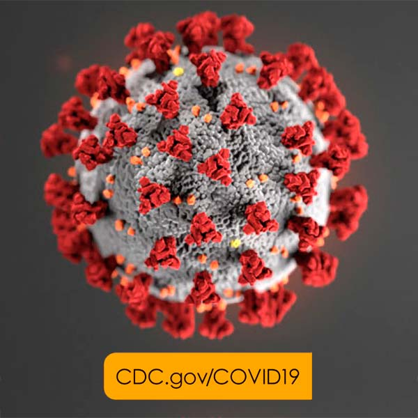 Read The Groovyhempblog.com Post Discussing How The CDC Is Working To Educate The USA About Coronavirus Disease 2019 (Covid-19).